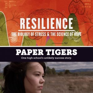 PAPER TIGERS and RESILIENCE